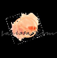 cropped-Larissa-Kim-Photography-Logo-copy.png
